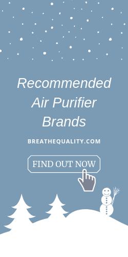 best air purifier brands