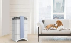 IQAir GC MultiGas Air Purifier: Trusted Review & Specs