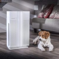 Biota Bot MM608I Air Purifier: Trusted Review & Specs