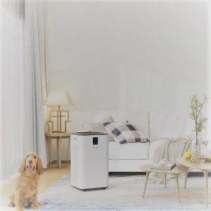 Inofia PM1539 Air Purifier: Trusted Review & Specs