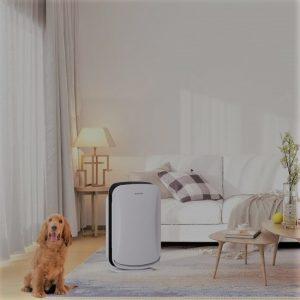 Inofia PM1619 Air Purifier: Trusted Review & Specs