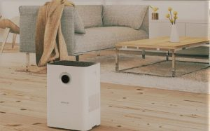 Boneco W200 Air Washer: Trusted Review & Specs